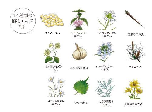 12種の植物エキス配合