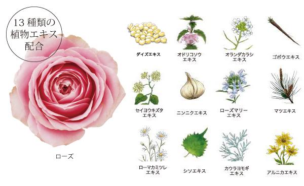 13種の植物エキス配合